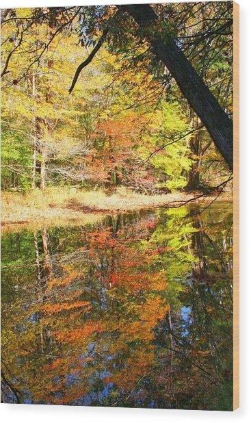 Lynn Run-5 Wood Print