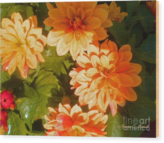 M Shades Orange Flowers Collection No. O3 Wood Print
