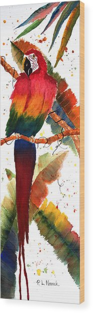 Macaw Feathers Wood Print by Patricia Novack