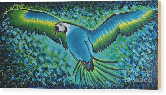 Macaw In Flight Wood Print