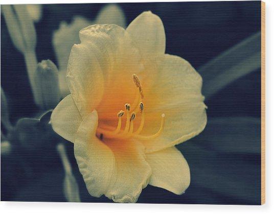 Macro Flower Wood Print
