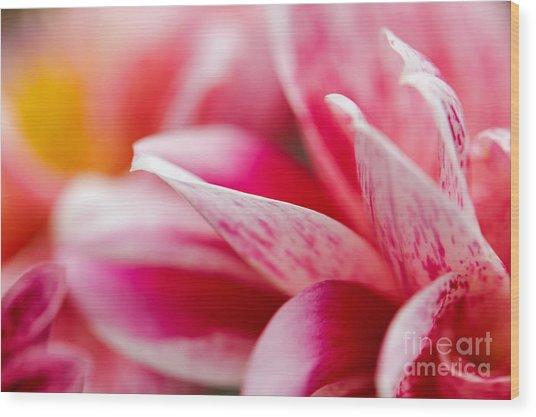 Macro Image Of A Pink Flower Wood Print