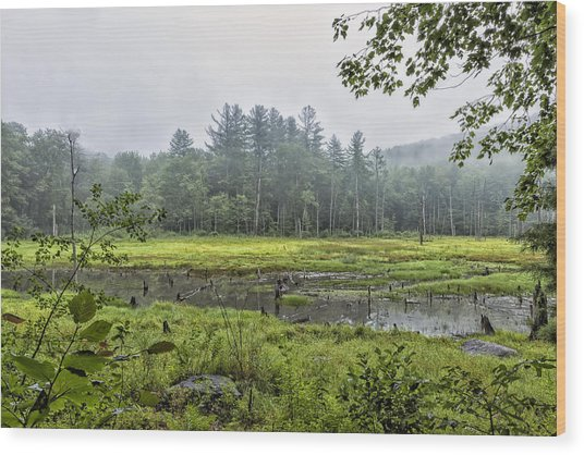 Madame Sherri Summer Pond Wood Print