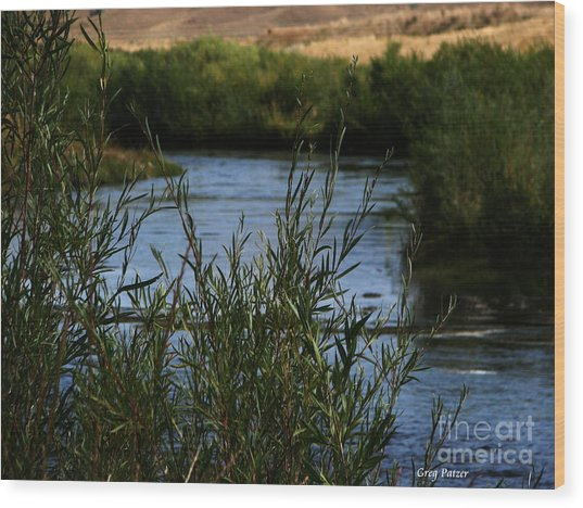 Madison River Wood Print by Greg Patzer