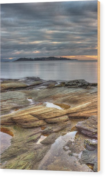 Madrona Sunrise Wood Print