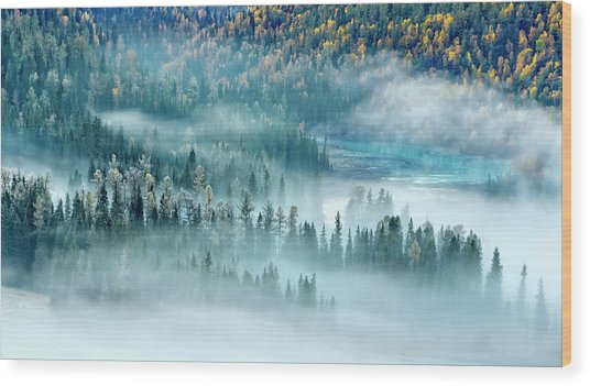Magic Bay Wood Print