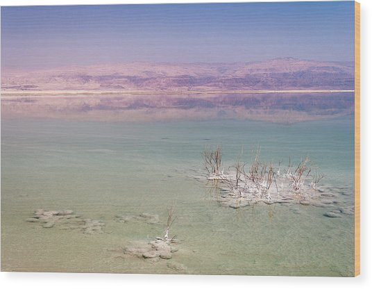 Magic Colors Of The Dead Sea Wood Print