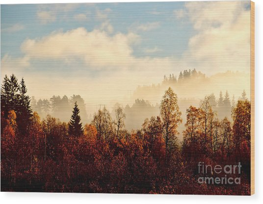 Magic Fall Forest Wood Print