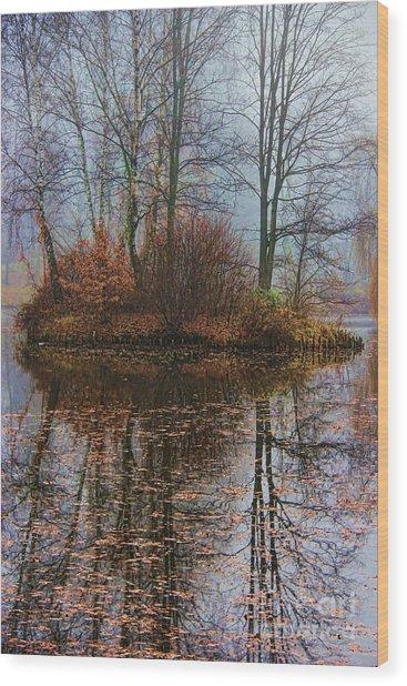 Magic Reflection Wood Print