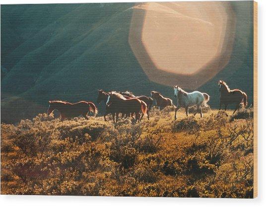 Magical Herd Wood Print