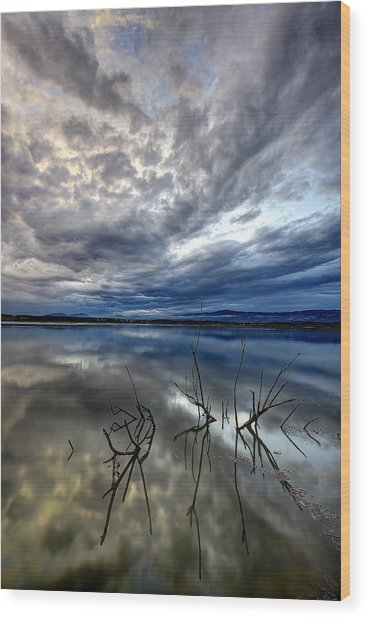 Magical Lake - Vertical Wood Print