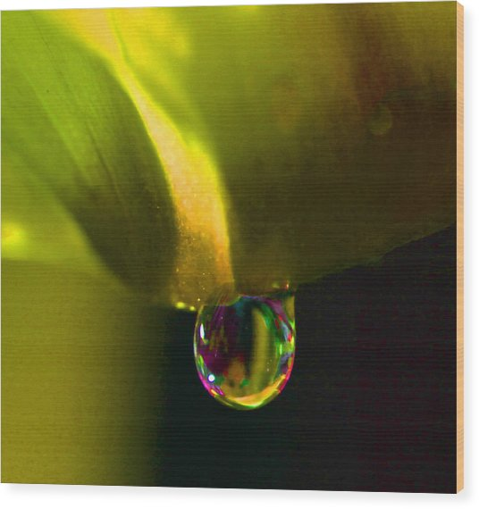 Magical Raindrop Wood Print