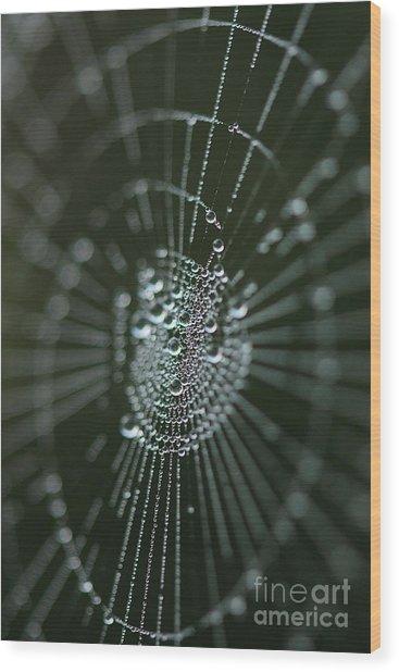Magical Web Wood Print