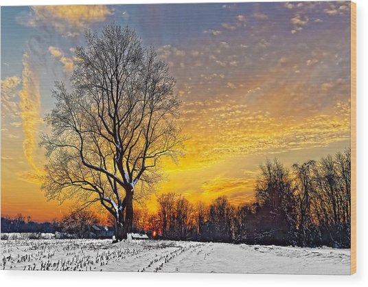 Magical Winter Sunset Wood Print