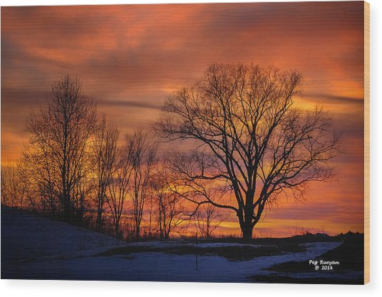 Magnificent Morning Wood Print