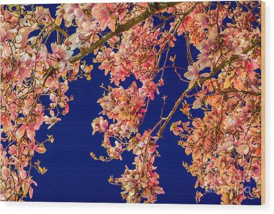 Magnolia - Redlight  Wood Print