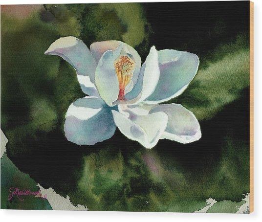 Magnolia At Starwood Glen Wood Print