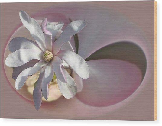 Magnolia Blossom Series 707 Wood Print