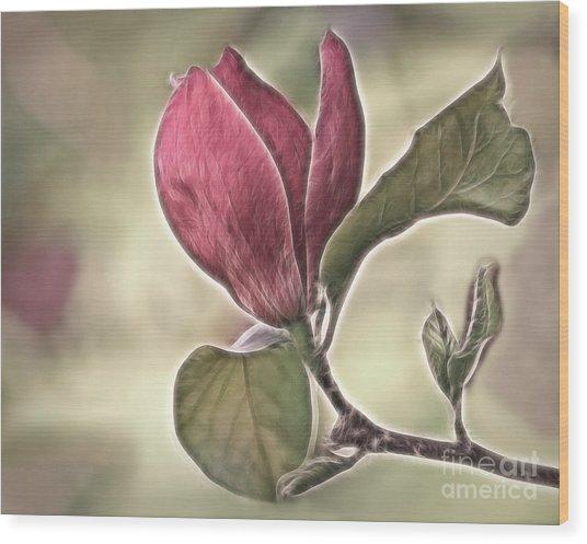 Magnolia Glow Wood Print