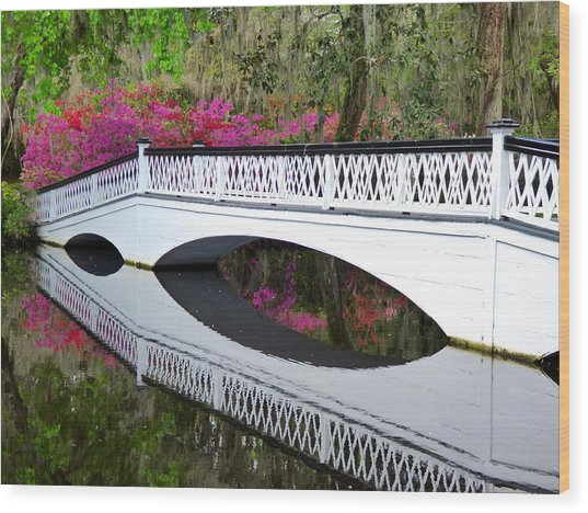 Magnolia White Bridge Wood Print