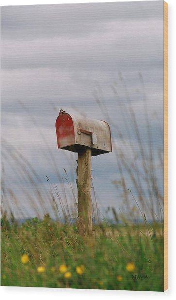 Mailbox Wood Print