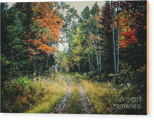 Maine Back Road Wood Print
