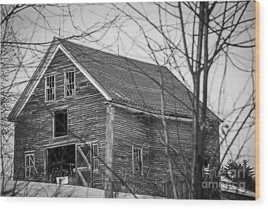 Maine Barn Wood Print