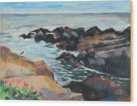 Maine Coast Rocks And Birds Wood Print