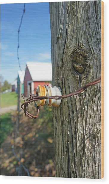 Maine Electric Fence Wood Print by Melissa C