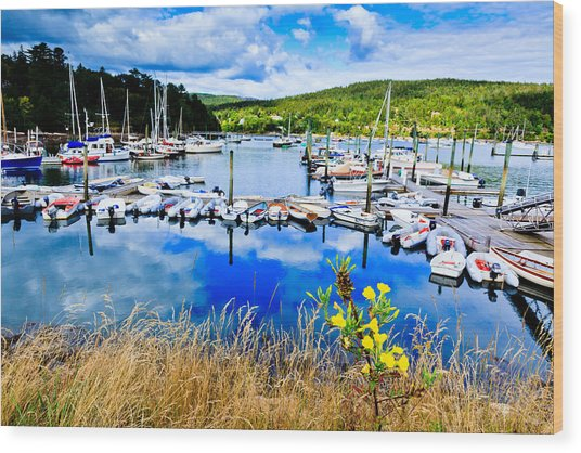 Maine Harbor Wood Print