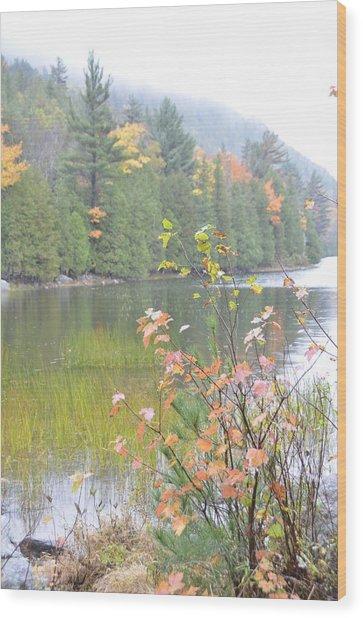Maine Lake Colors Wood Print