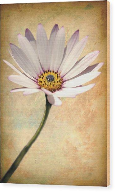 Maisy Daisy Wood Print