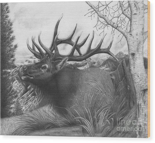 Majestic Bull Elk Wood Print