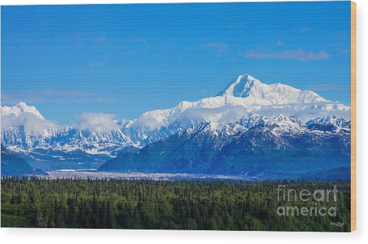 Majestic Mt Mckinley Wood Print
