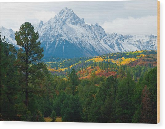 Majestic Mt. Sneffels Wood Print