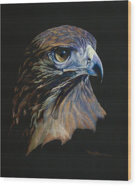 Majestic Raptor Red-tail Hawk Wood Print