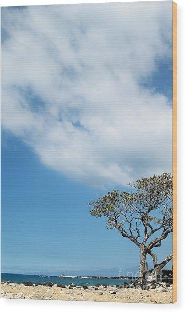 Makalawena Beach Wood Print