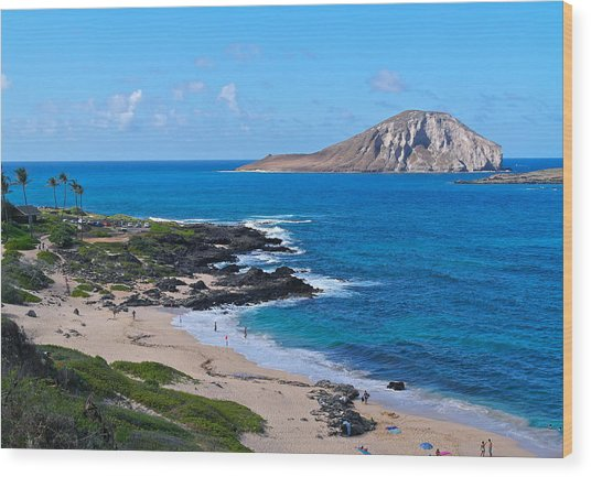 Makapuu Beach With Rabbit Island Wood Print