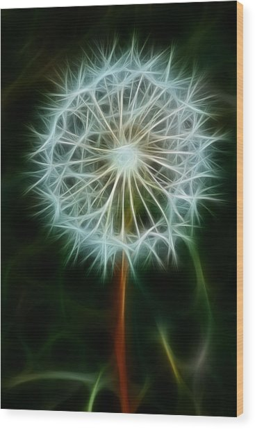 Make A Wish Wood Print