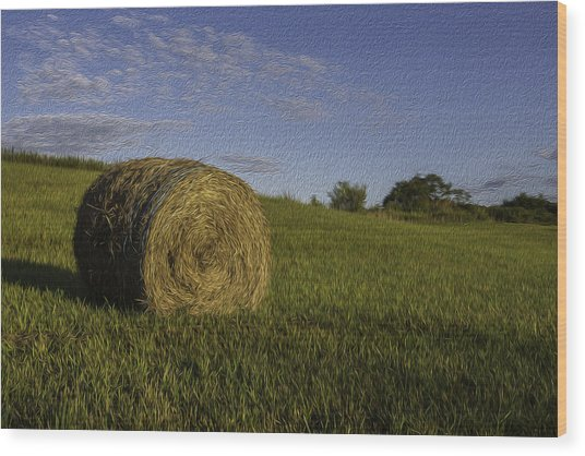 Make Hay Wood Print