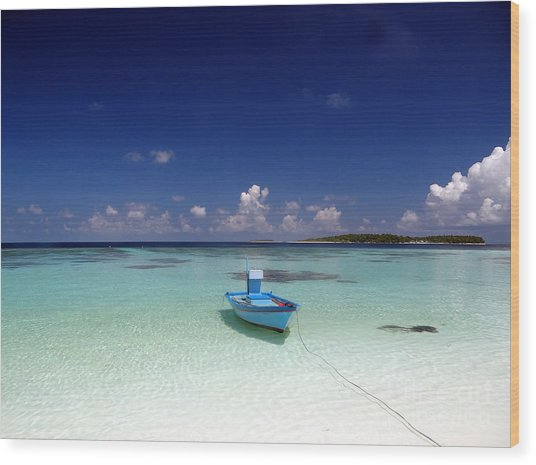 Maldives 09 Wood Print by Giorgio Darrigo