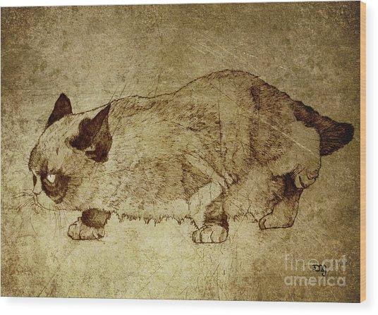 Male Cat Hunts At Night Wood Print