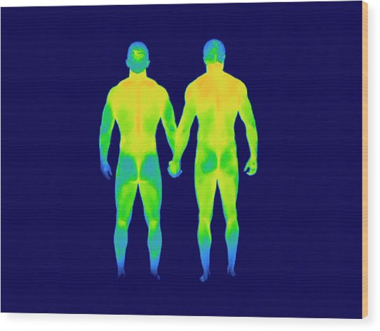 Male Couple Holding Hands Wood Print