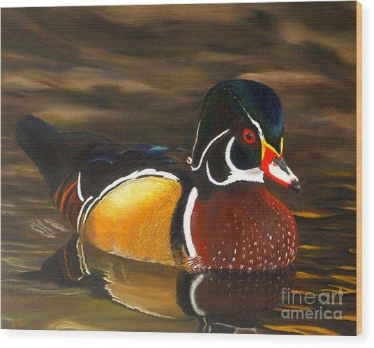 Male Wood Duck Portrait Wood Print