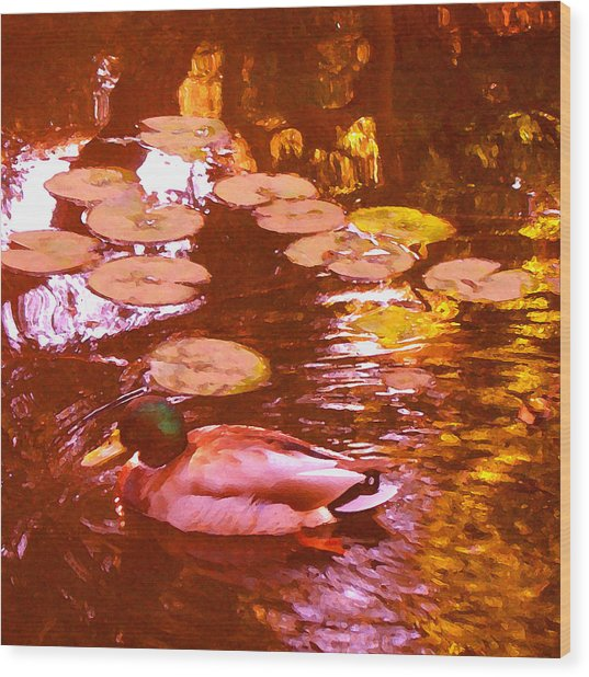 Mallard Duck On Pond 3 Square Wood Print
