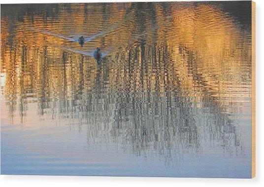 Mallard Pair At Kah Tai Lagoon Wood Print