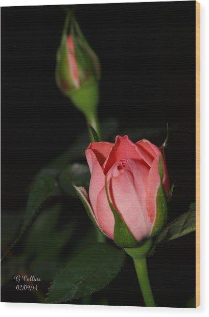 Mama's Rose Wood Print