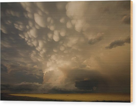 Mammatus Clouds Over Fields Wood Print by Roger Hill/science Photo Library