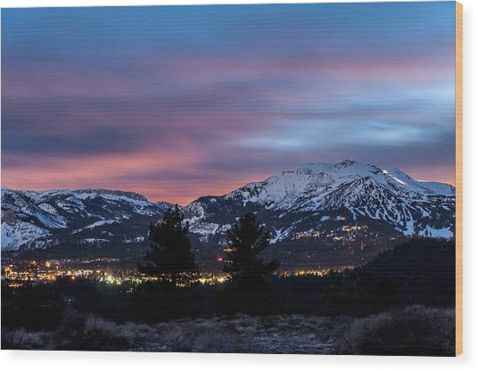 Mammoth At Night Wood Print