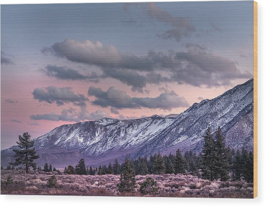 Mammoth Mountain Near Mammoth Lakes Wood Print